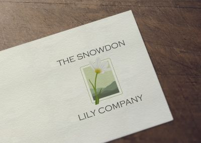 The Snowdon Lilly Company